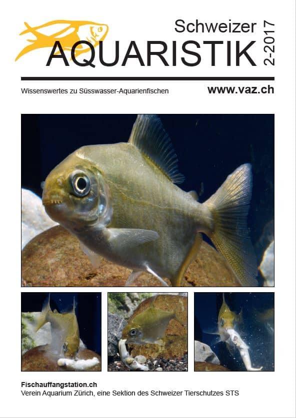 Themenheft Schweizer Aquaristik 2/2017 erschienen 1