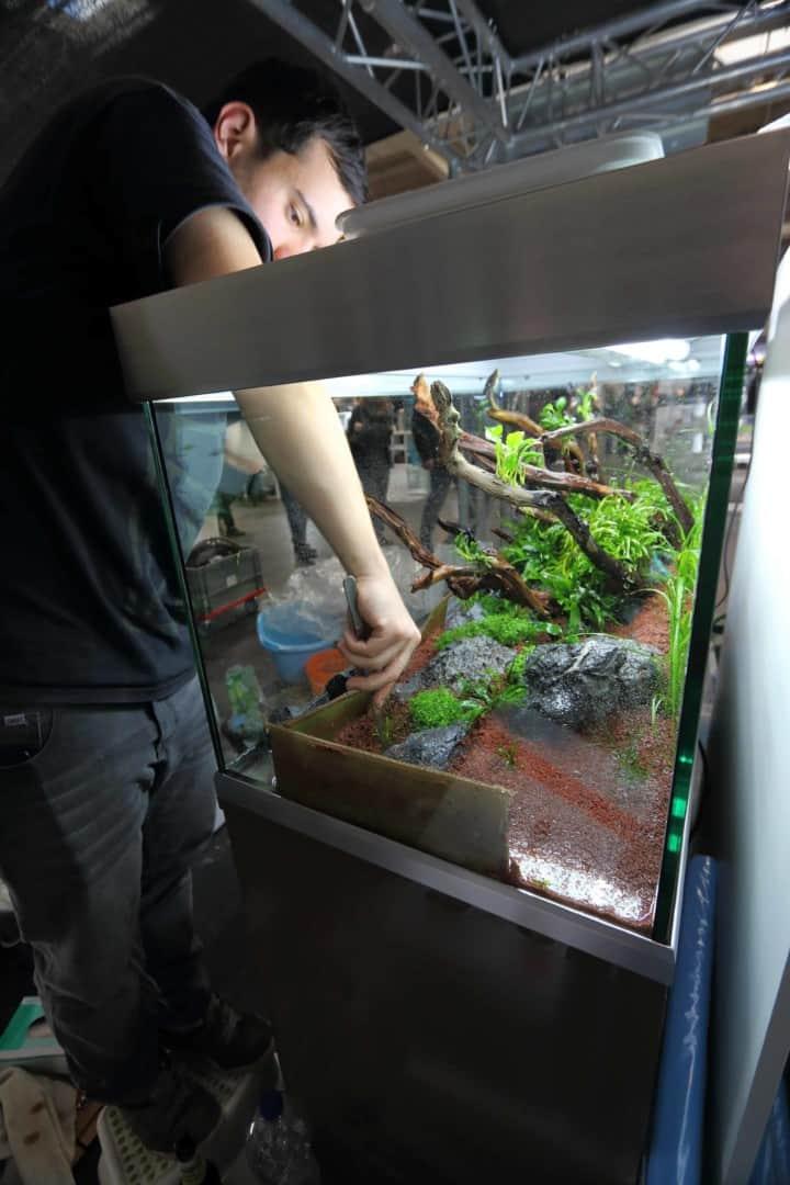 Podcast Episode #98: The Art Of The Planted Aquarium (Harald Soßna) 8