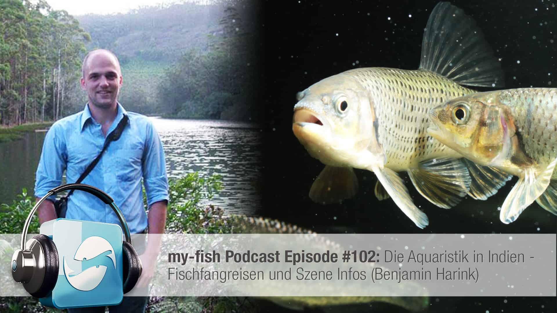 Podcast Episode #102: Die Aquaristik in Indien - Fischfangreisen und Szene Infos (Benjamin Harink) 1