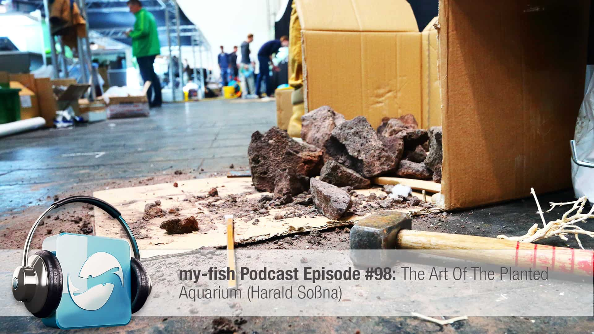 podcast episode 98 the art of the planted aquarium harald so na my fish. Black Bedroom Furniture Sets. Home Design Ideas