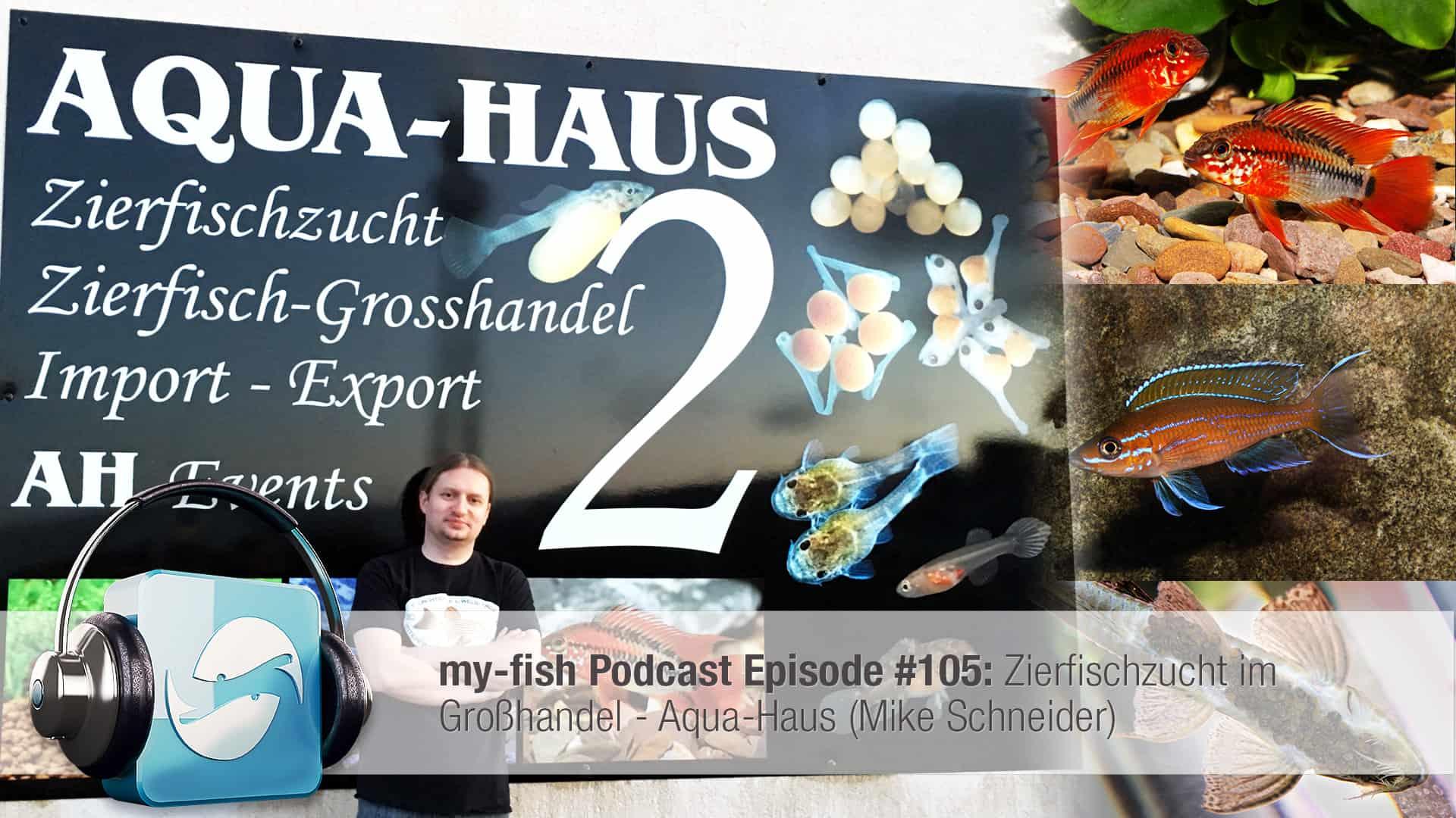 Podcast Episode #105: Zierfischzucht im Großhandel - Aqua-Haus (Mike Schneider) 1