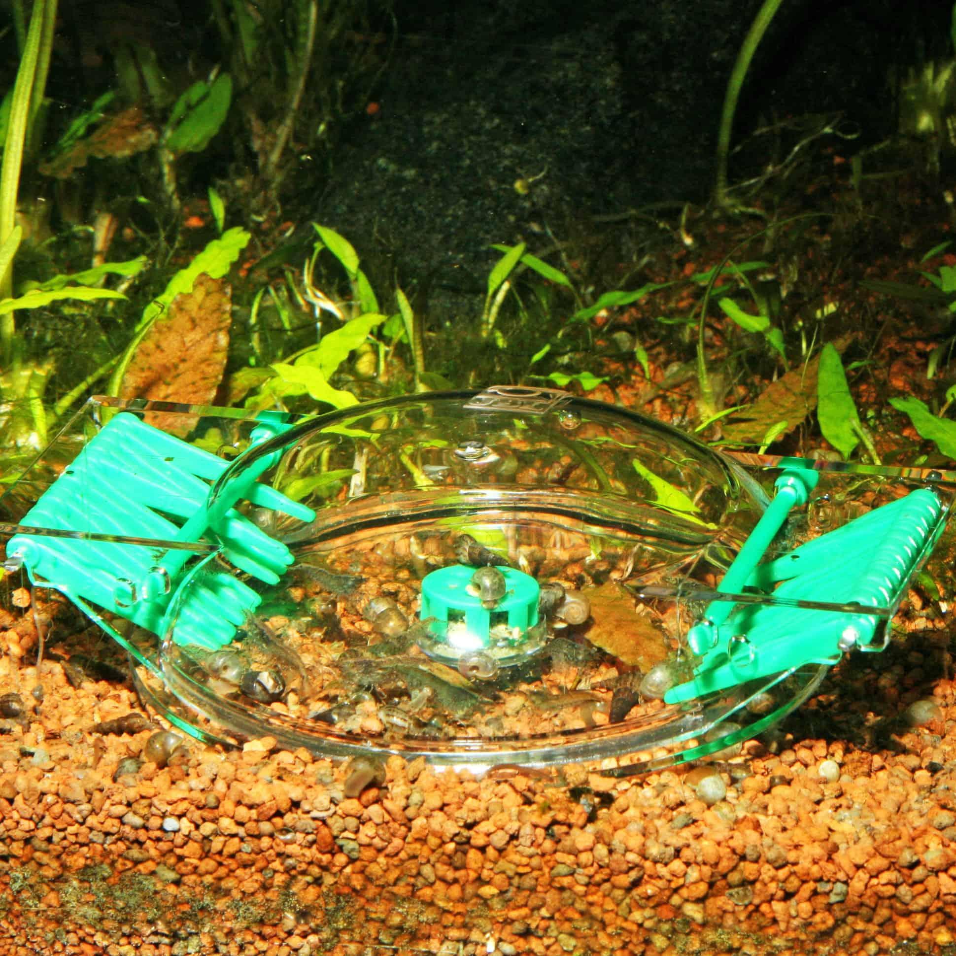 zubeh r kleine helferlein im und am aquarium my fish. Black Bedroom Furniture Sets. Home Design Ideas
