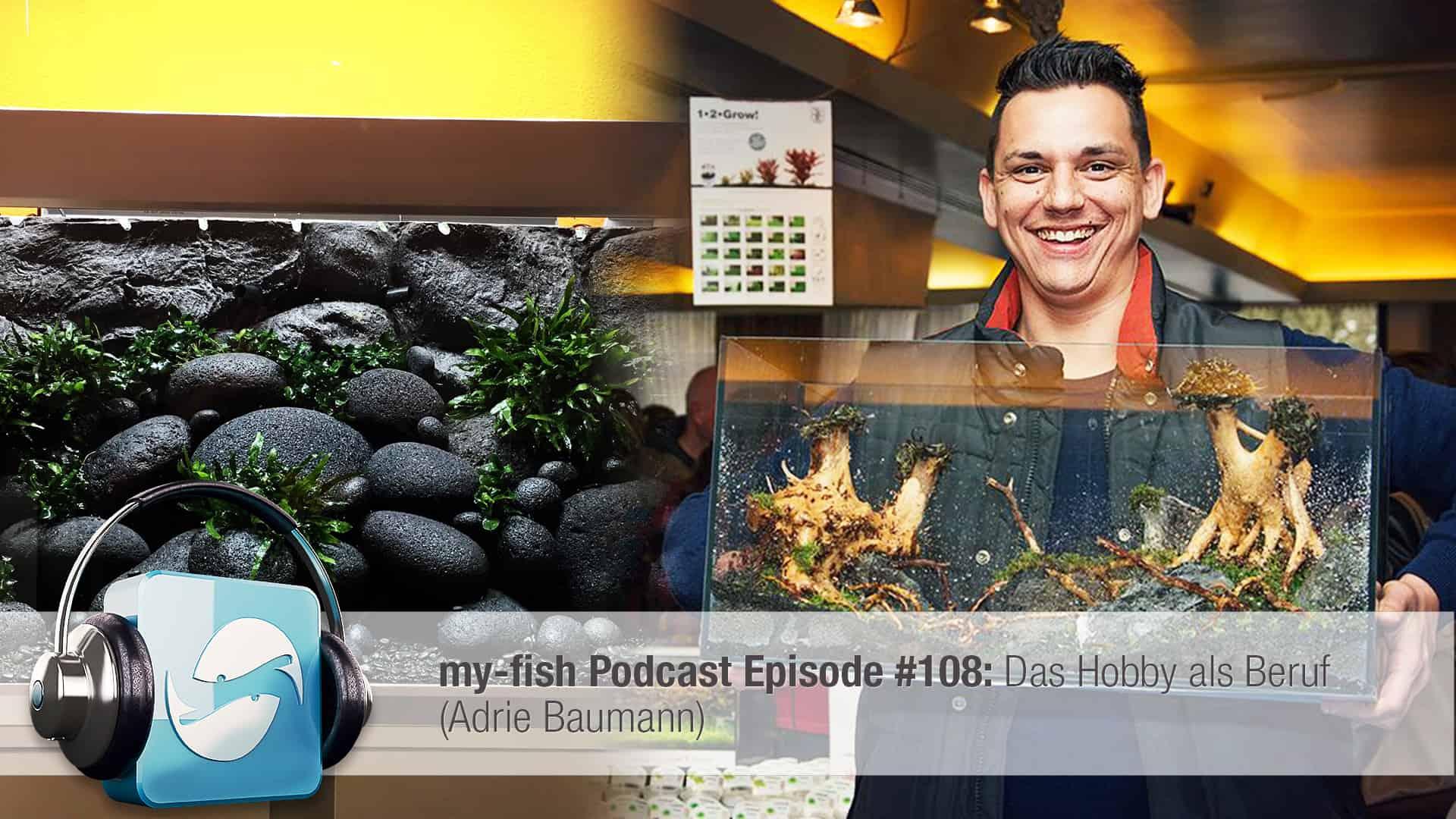 Podcast Episode #108: Aquascaper - Das Hobby als Beruf (Adrie Baumann) 1