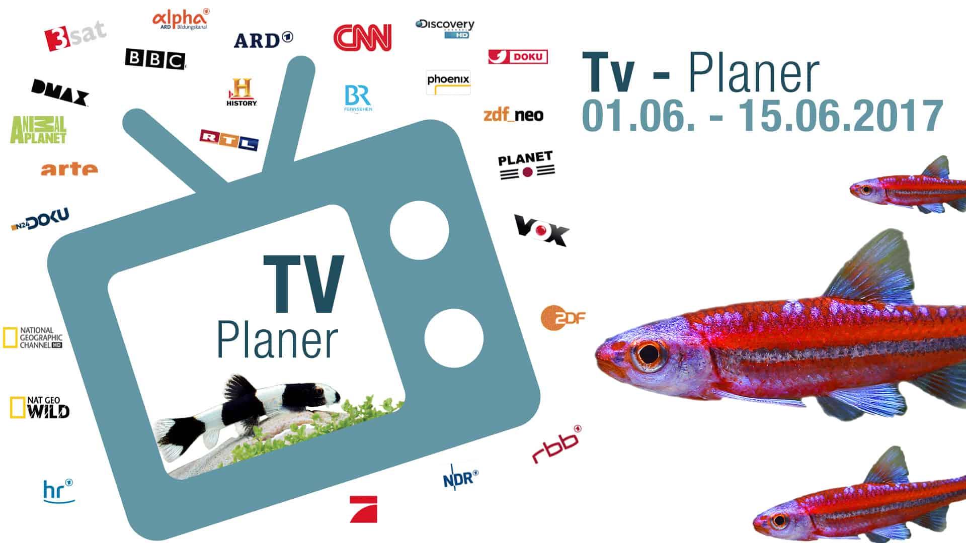 Neue Beitragsserie: TV-Liste vom 01.06. - 15.06.2017 1