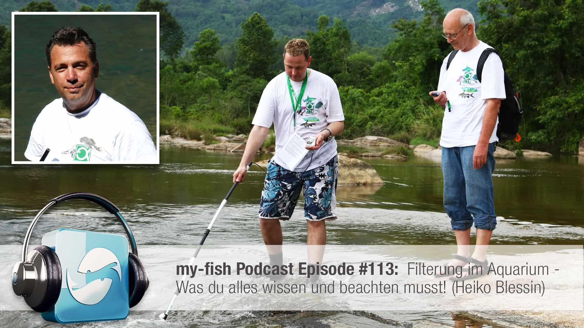 Podcast Episode #113: Filterung im Aquarium - Was du alles wissen und beachten musst! (Heiko Blessin) 1
