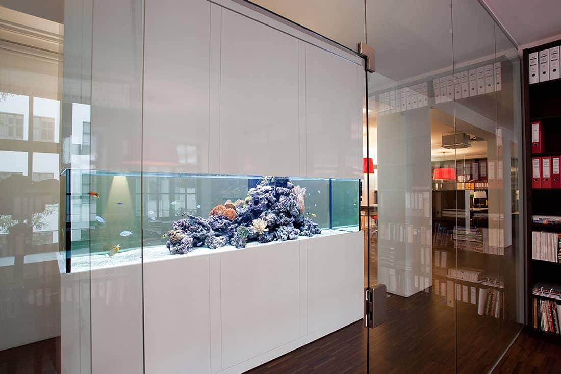 Podcast Episode #119: Das erste Meerwasseraquarium (Markus Mahl) 2
