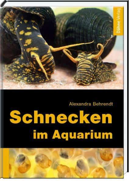 Podcast Episode #120: Das Schneckenaquarium (Alexandra Behrendt) 4