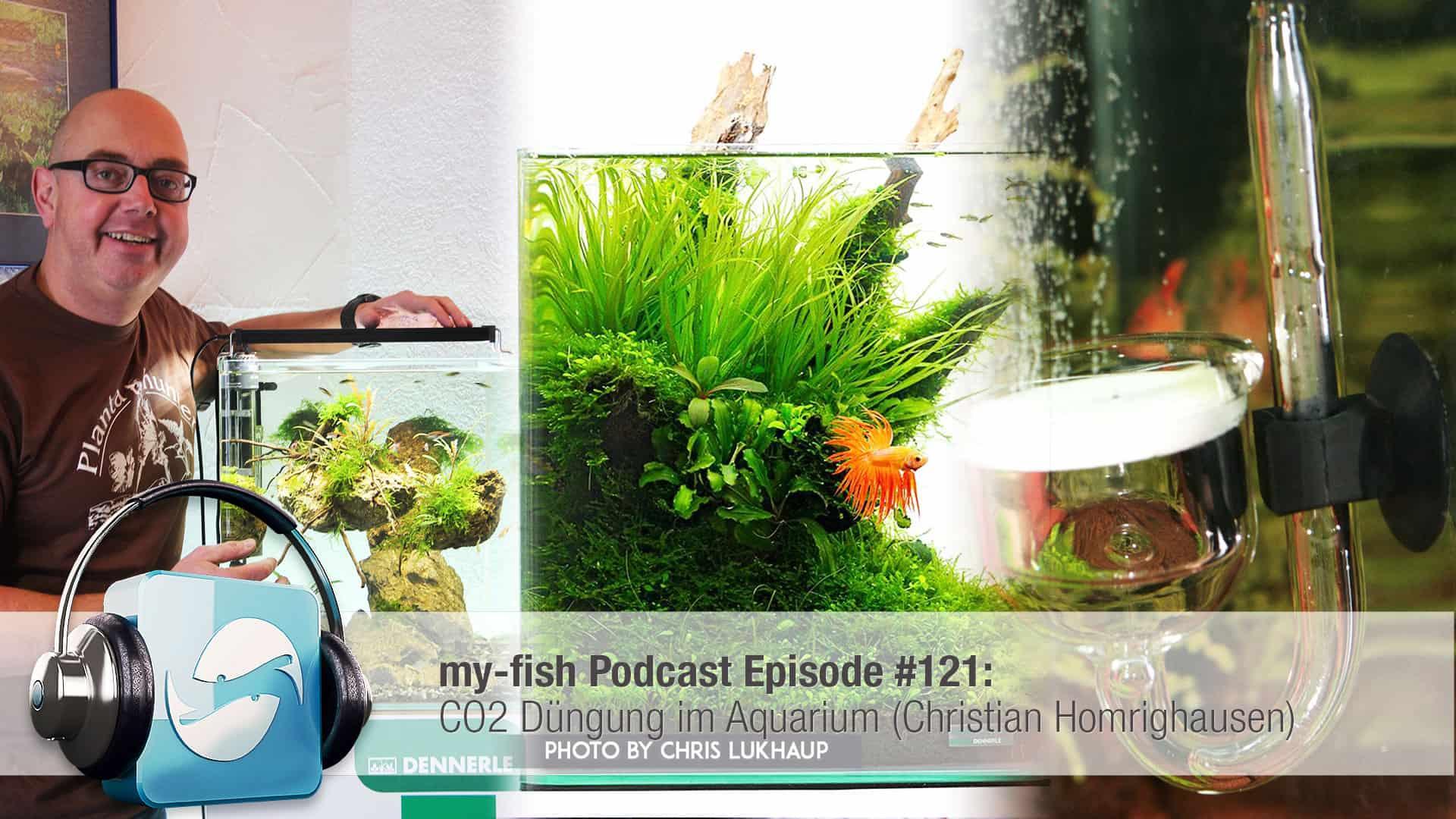 Podcast Episode #121: CO2 Düngung im Aquarium (Christian Homrighausen) 1