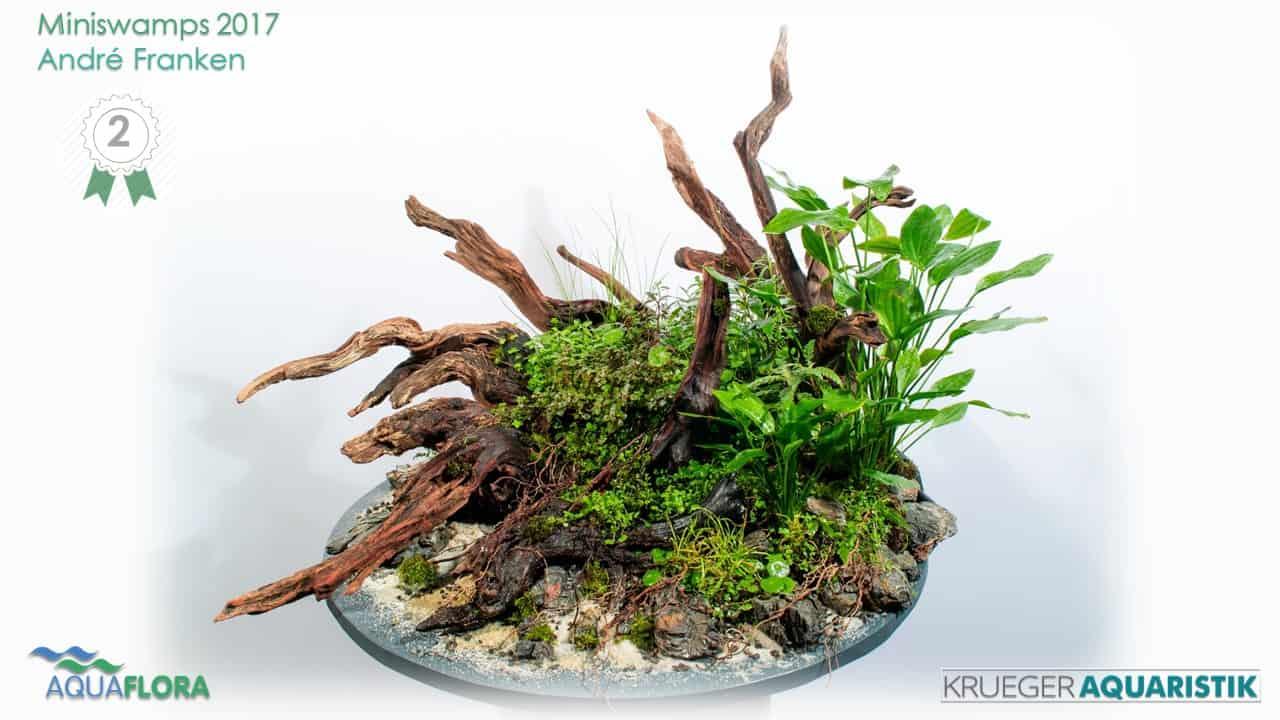 Die Ergebnisse des Miniswamps Contest 2