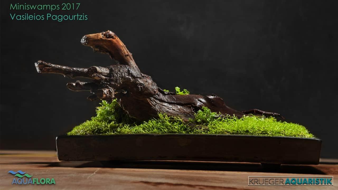 Die Ergebnisse des Miniswamps Contest 23