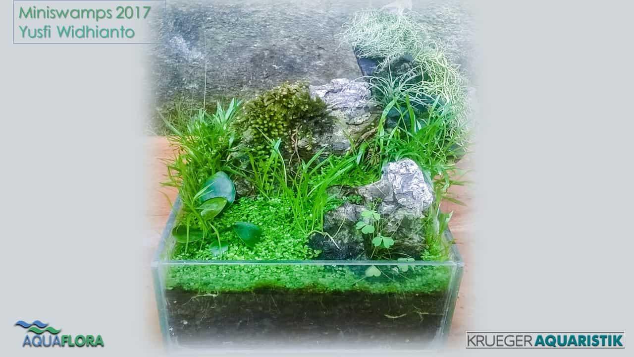 Die Ergebnisse des Miniswamps Contest 26