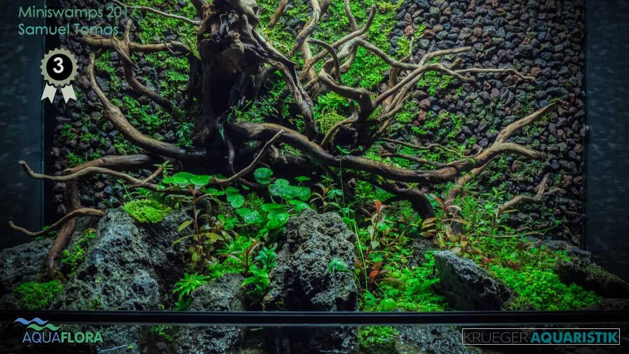 Die Ergebnisse des Miniswamps Contest 3