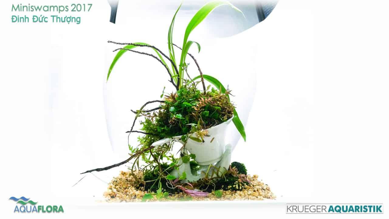 Die Ergebnisse des Miniswamps Contest 36