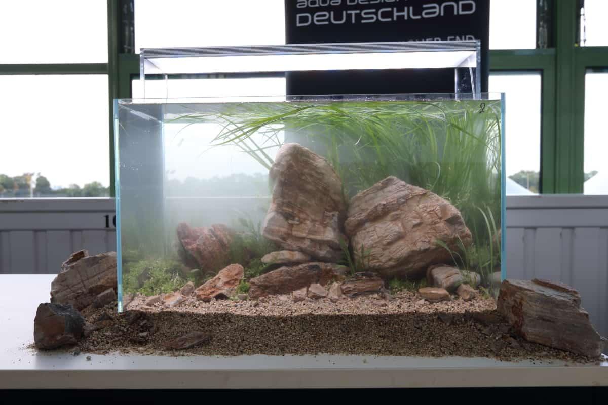 Podcast Episode #130: Messebericht - aqua EXPO Tage Dortmund 2017 48
