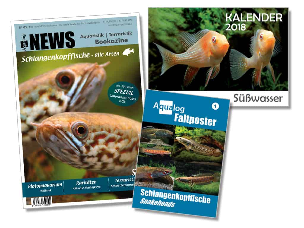 """Kennst du schon das """"NEWS Bookazine"""" Nr. 3 aus dem Hause Aqualog? 1"""
