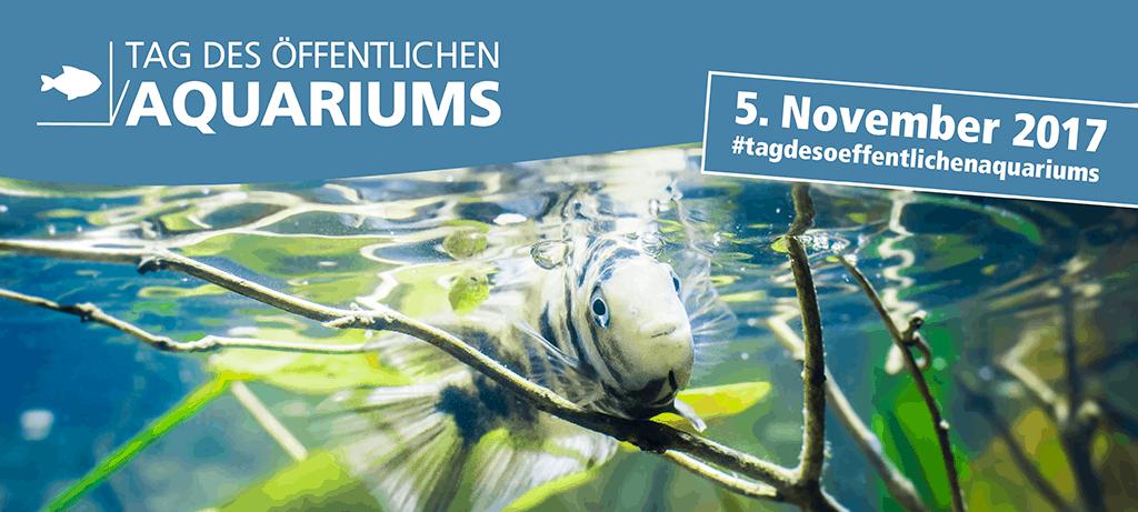 Tag des öffentlichen Aquariums - Mach mit! 1