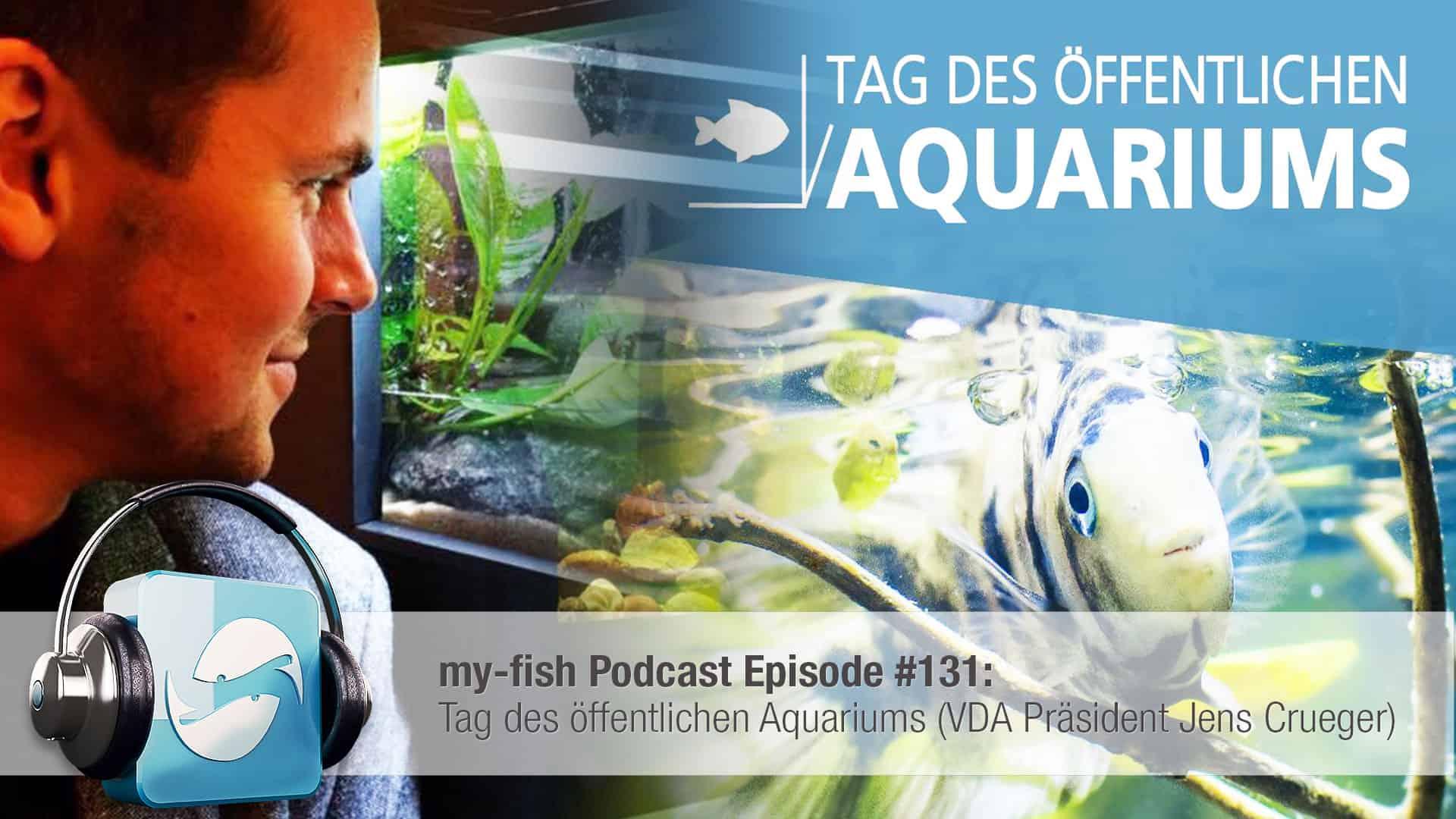 Podcast Episode #131: Tag des öffentlichen Aquariums (VDA Präsident Jens Crueger) 1
