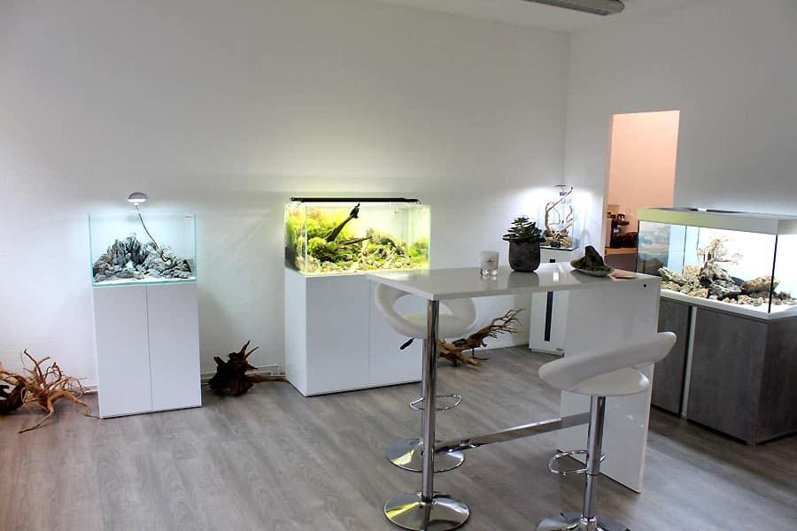 Podcast Episode #135: Bodendecker im Aquarium (Oliver Lindemann) 6