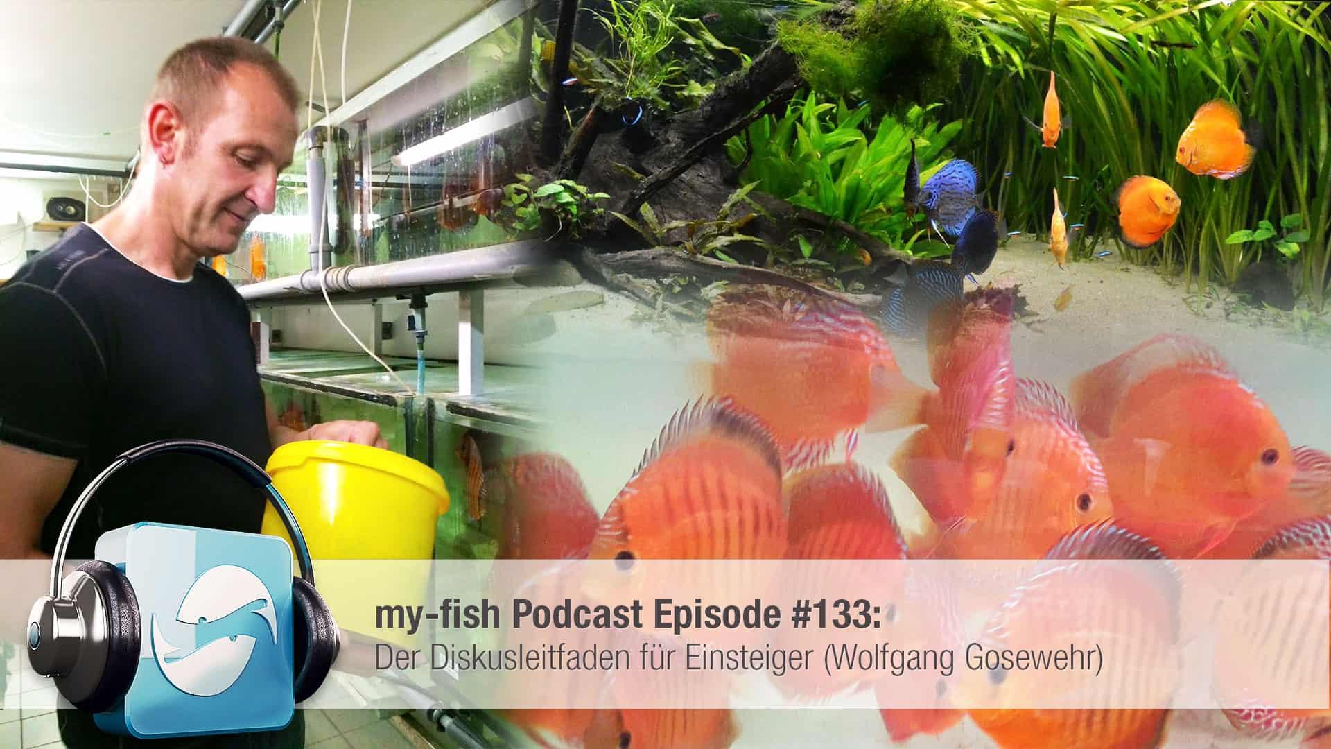 Podcast Episode #133: Der Diskusleitfaden für Einsteiger (Wolfgang Gosewehr) 1