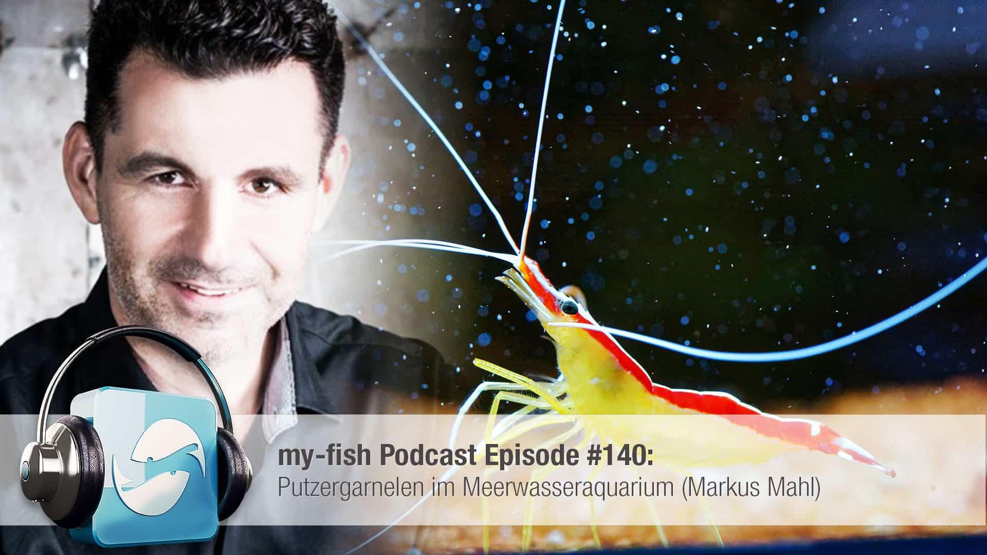 Podcast Episode #140: Putzergarnelen im Meerwasseraquarium (Markus Mahl) 1