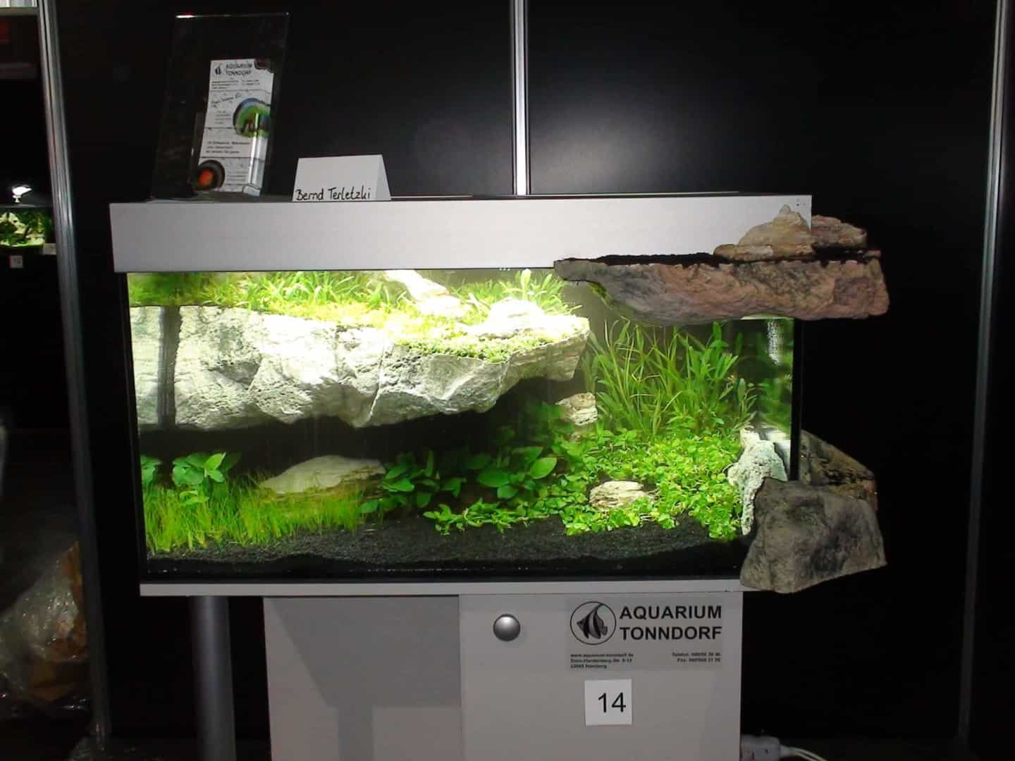 """Podcast Episode #148: 10 Jahre """"The Art of the Planted Aquarium (Harald Soßna) 34"""