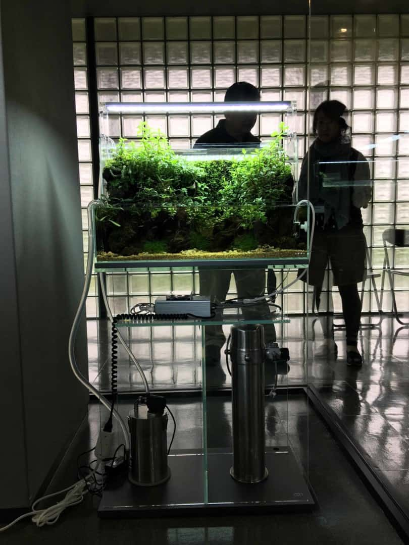 Podcast Episode #149: Das Wasserfall Aquarium (Jurijs Jutjajevs) 7