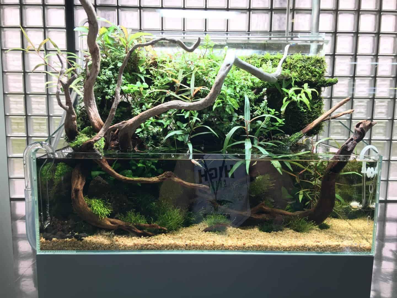 Podcast Episode #149: Das Wasserfall Aquarium (Jurijs Jutjajevs) 15