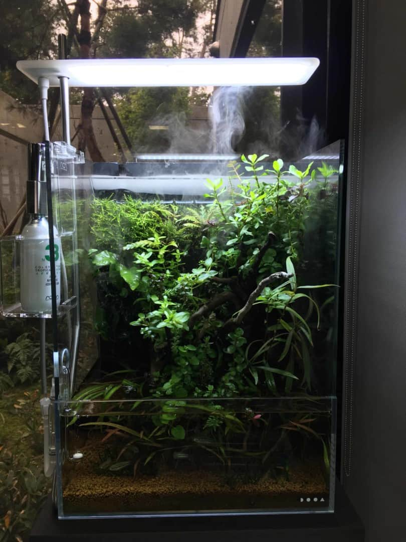Podcast Episode #149: Das Wasserfall Aquarium (Jurijs Jutjajevs) 20