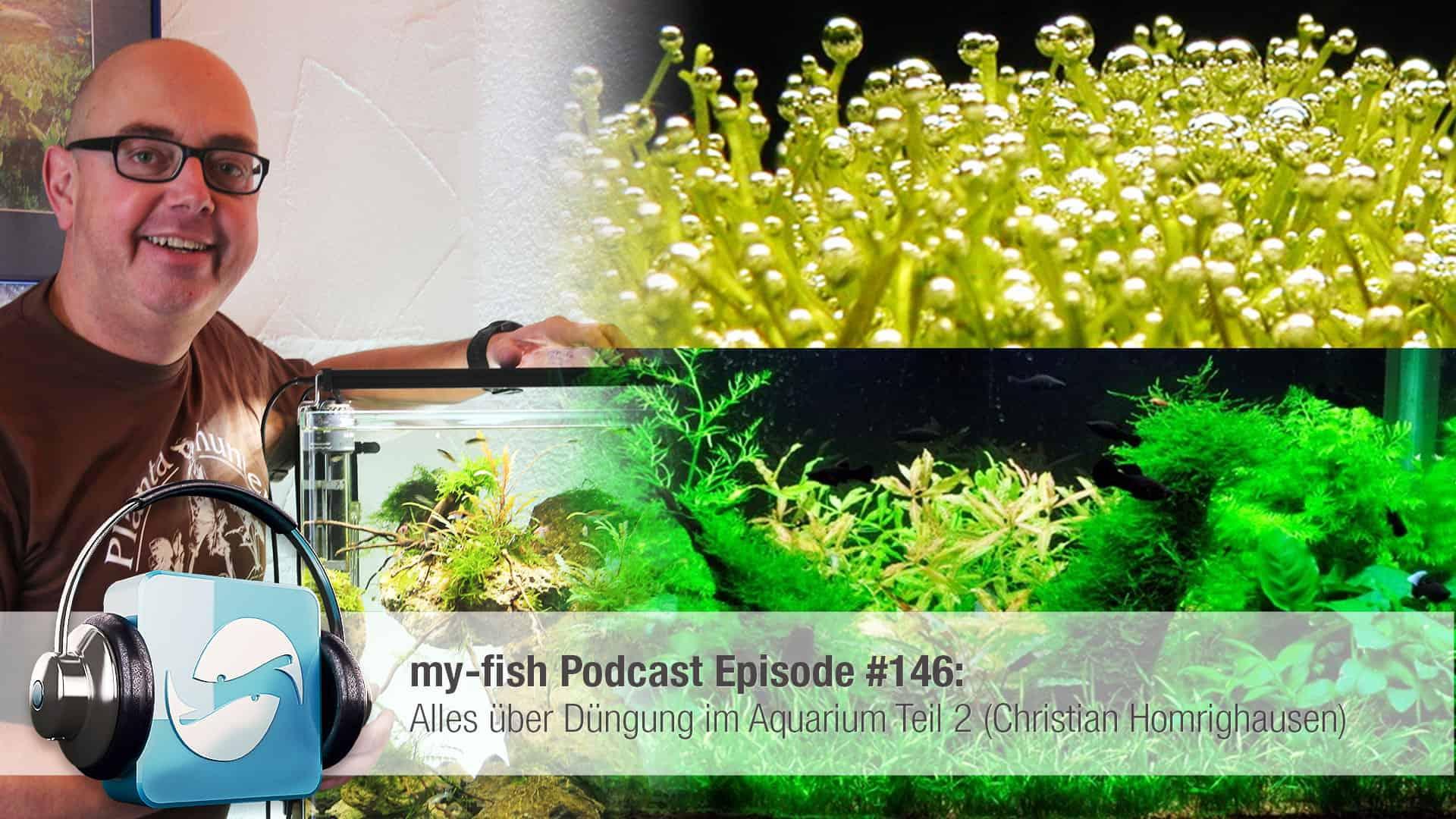 Podcast Episode #146: Alles über Düngung im Aquarium Teil 2 (Christian Homrighausen) 1