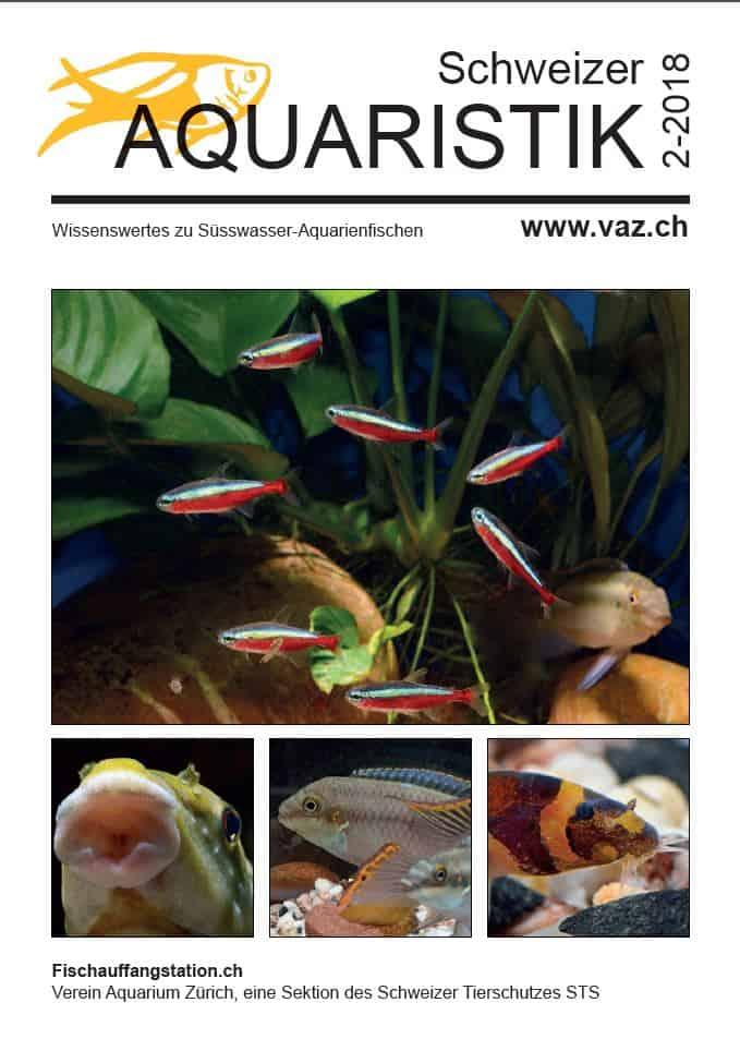 VAZ Ausgabe 2 / 2018 - kostenloses Magazin zum Download 1