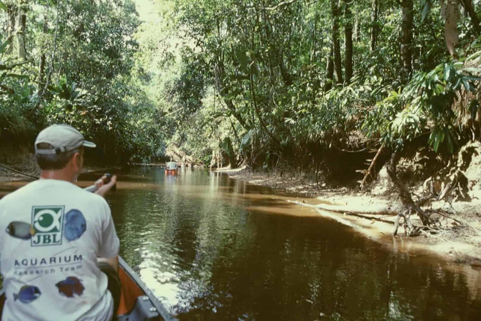 2004 - Französisch Guyana und Karibik
