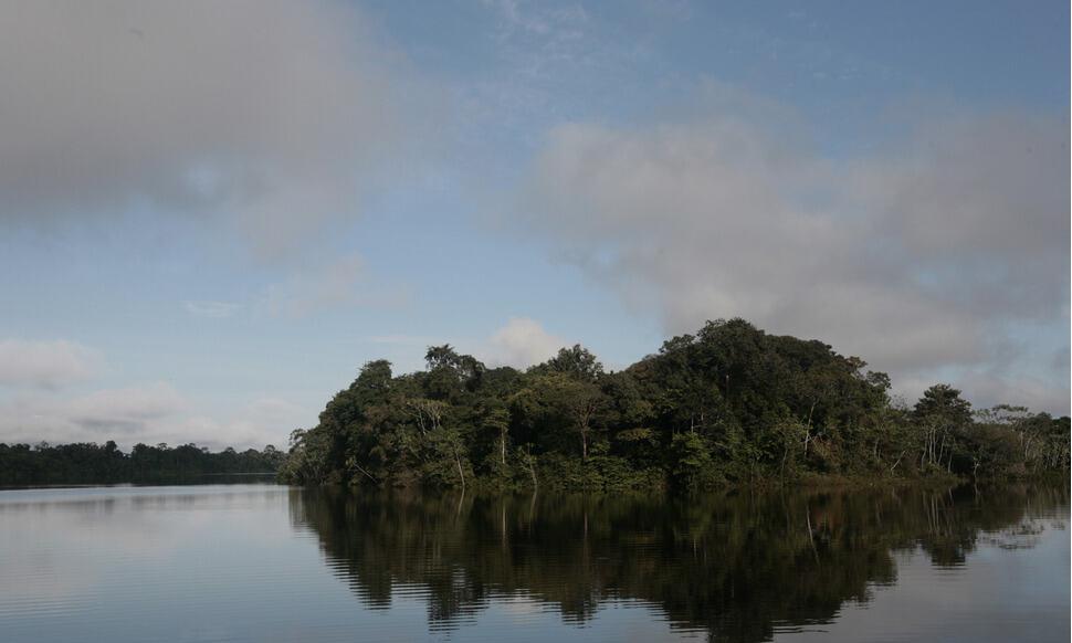 154 : Expeditionen zu den Biotopen der Aquarienfische Teil 2 (Heiko Blessin) 8