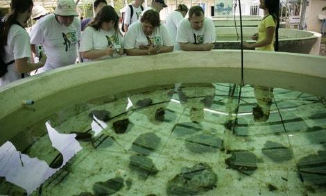 154 : Expeditionen zu den Biotopen der Aquarienfische Teil 2 (Heiko Blessin) 3