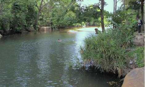154 : Expeditionen zu den Biotopen der Aquarienfische Teil 2 (Heiko Blessin) 23