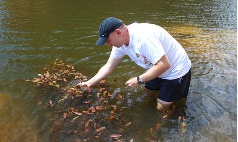 154 : Expeditionen zu den Biotopen der Aquarienfische Teil 2 (Heiko Blessin) 39