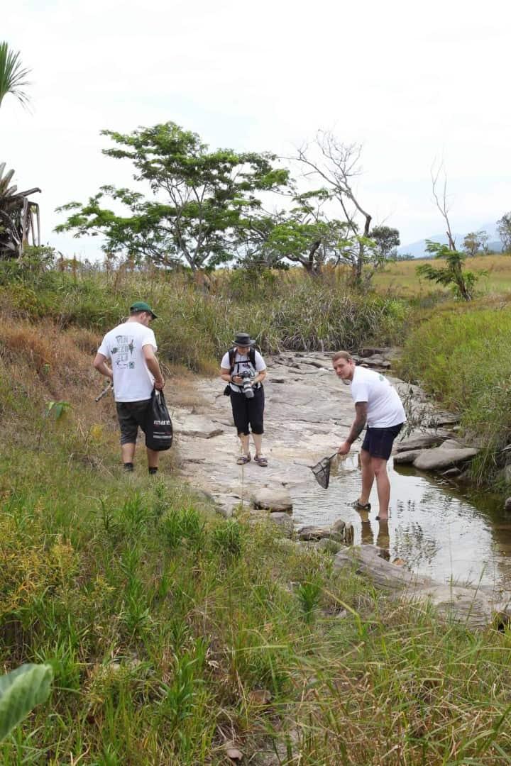 154 : Expeditionen zu den Biotopen der Aquarienfische Teil 2 (Heiko Blessin) 43