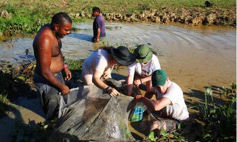 154 : Expeditionen zu den Biotopen der Aquarienfische Teil 2 (Heiko Blessin) 56