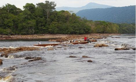 154 : Expeditionen zu den Biotopen der Aquarienfische Teil 2 (Heiko Blessin) 60