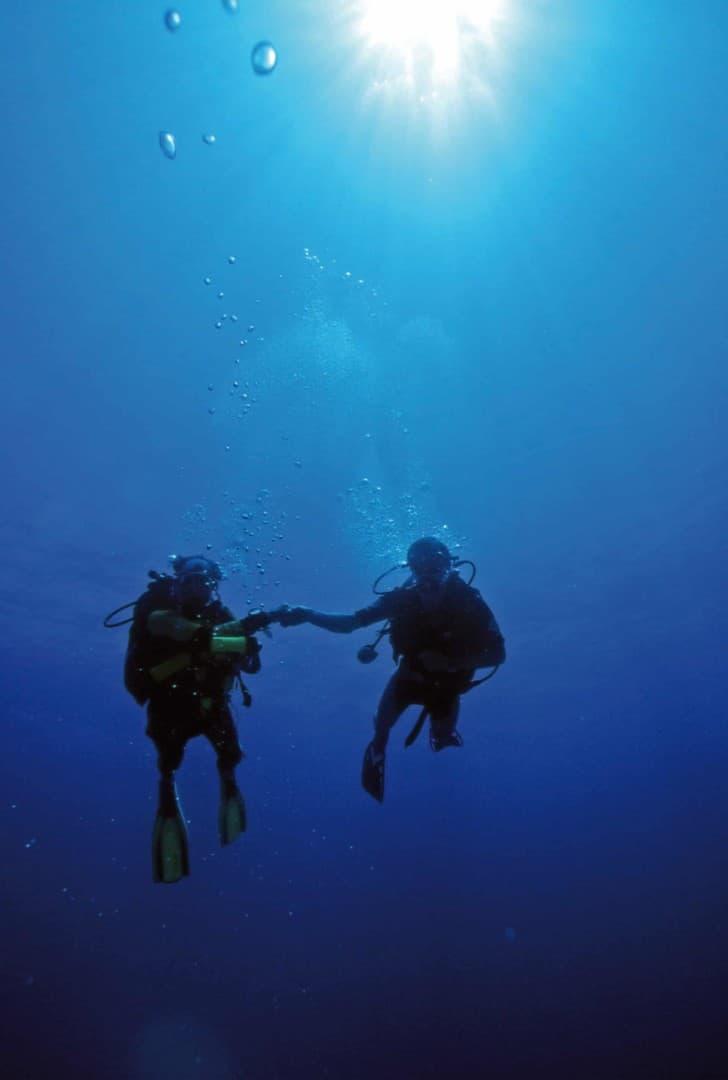 154 : Expeditionen zu den Biotopen der Aquarienfische Teil 2 (Heiko Blessin) 68