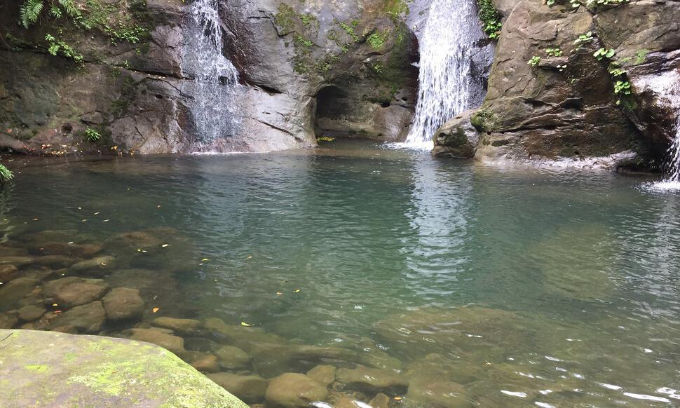 154 : Expeditionen zu den Biotopen der Aquarienfische Teil 2 (Heiko Blessin) 80