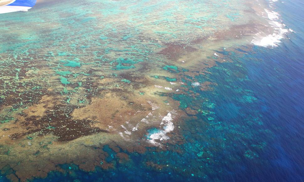154 : Expeditionen zu den Biotopen der Aquarienfische Teil 2 (Heiko Blessin) 87