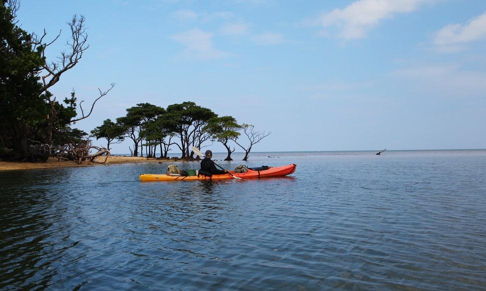 154 : Expeditionen zu den Biotopen der Aquarienfische Teil 2 (Heiko Blessin) 88