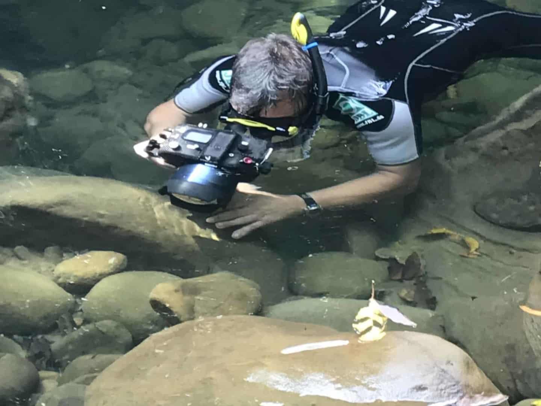 154 : Expeditionen zu den Biotopen der Aquarienfische Teil 2 (Heiko Blessin) 96