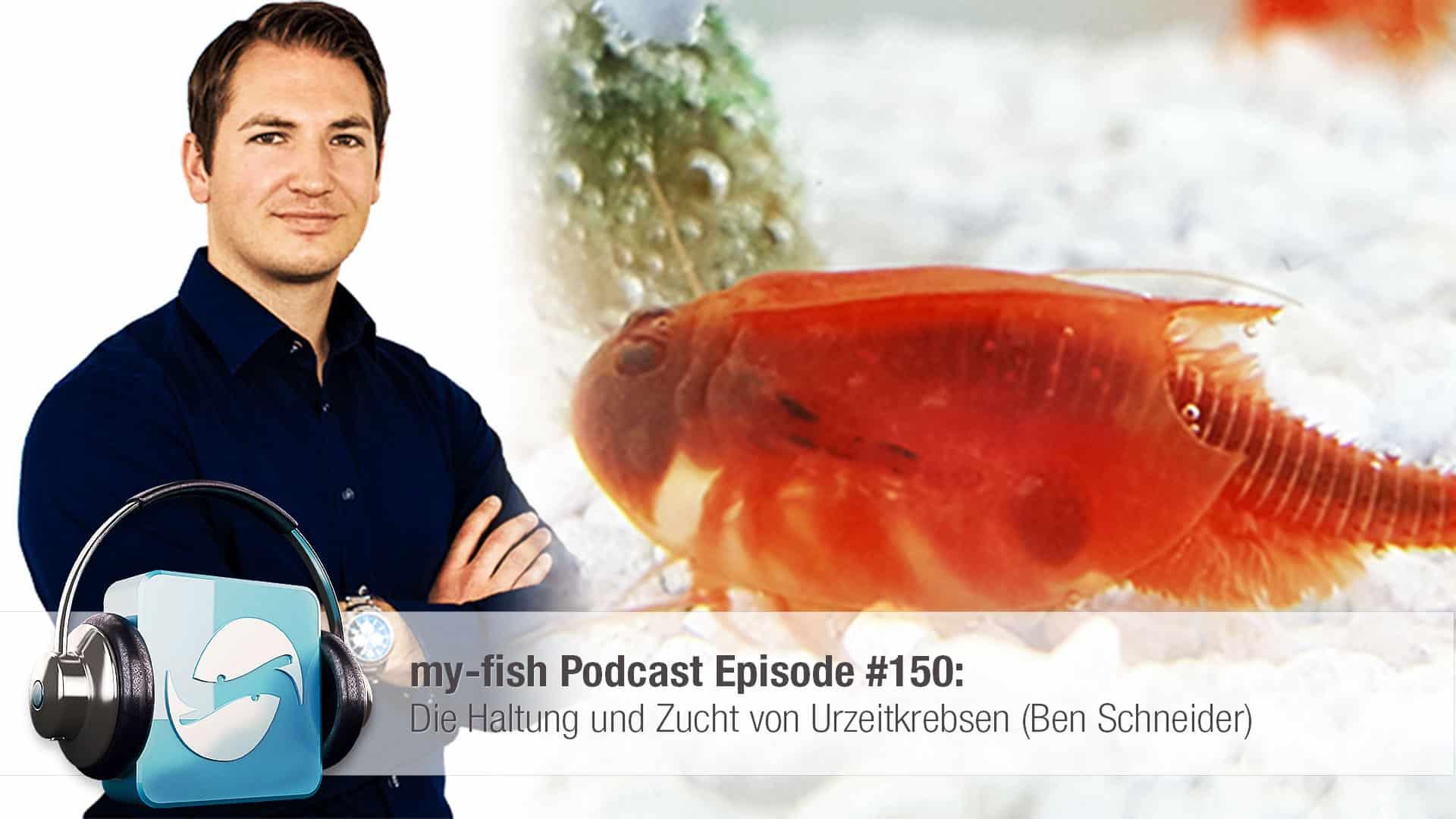 Podcast Episode #150: Die Haltung und Zucht von Urzeitkrebsen (Ben Schneider) 1