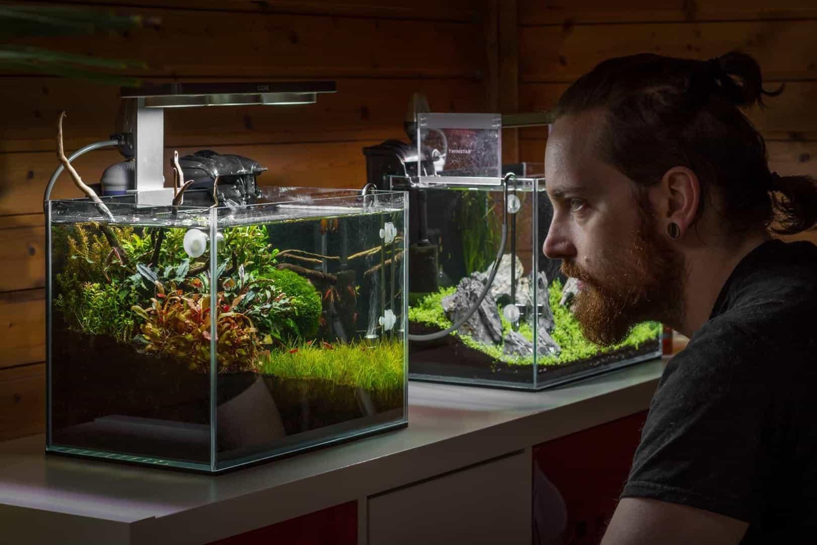 158 5 Tipps zur einfachen Aquarienpflege (Tobias Gawrisch aka AquaOwner) 4