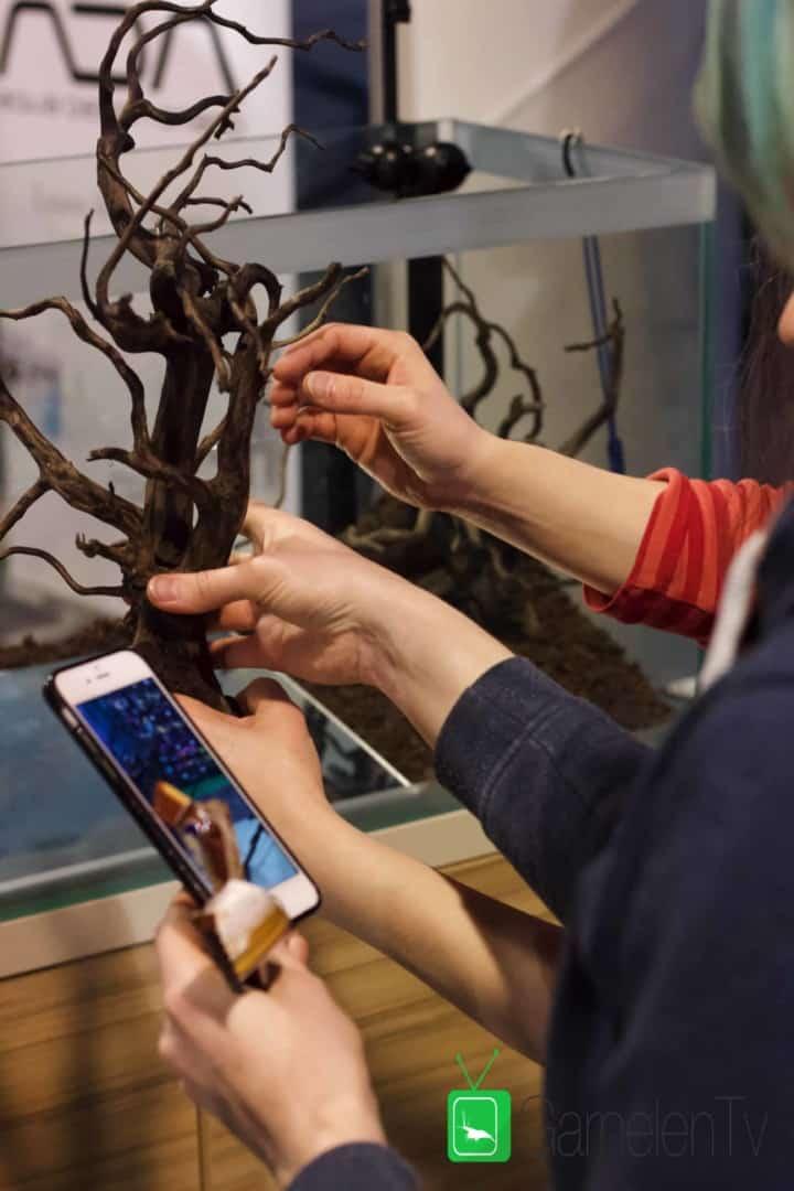 157 : Die Aquarium Design Meisterschule 25