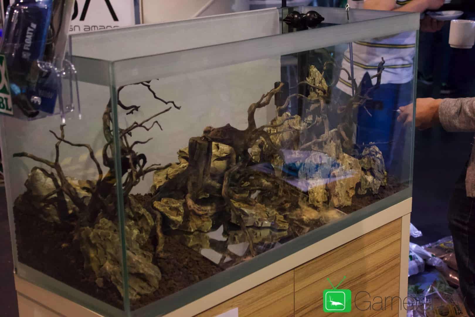 157 : Die Aquarium Design Meisterschule 41