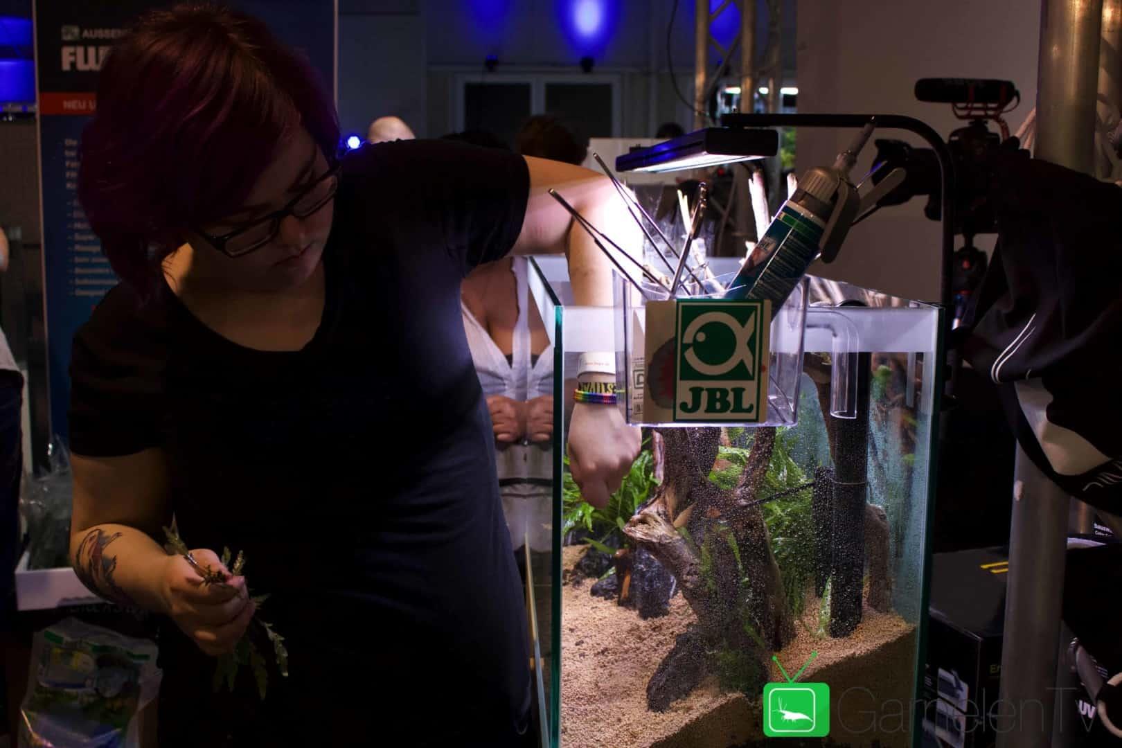 157 : Die Aquarium Design Meisterschule 55