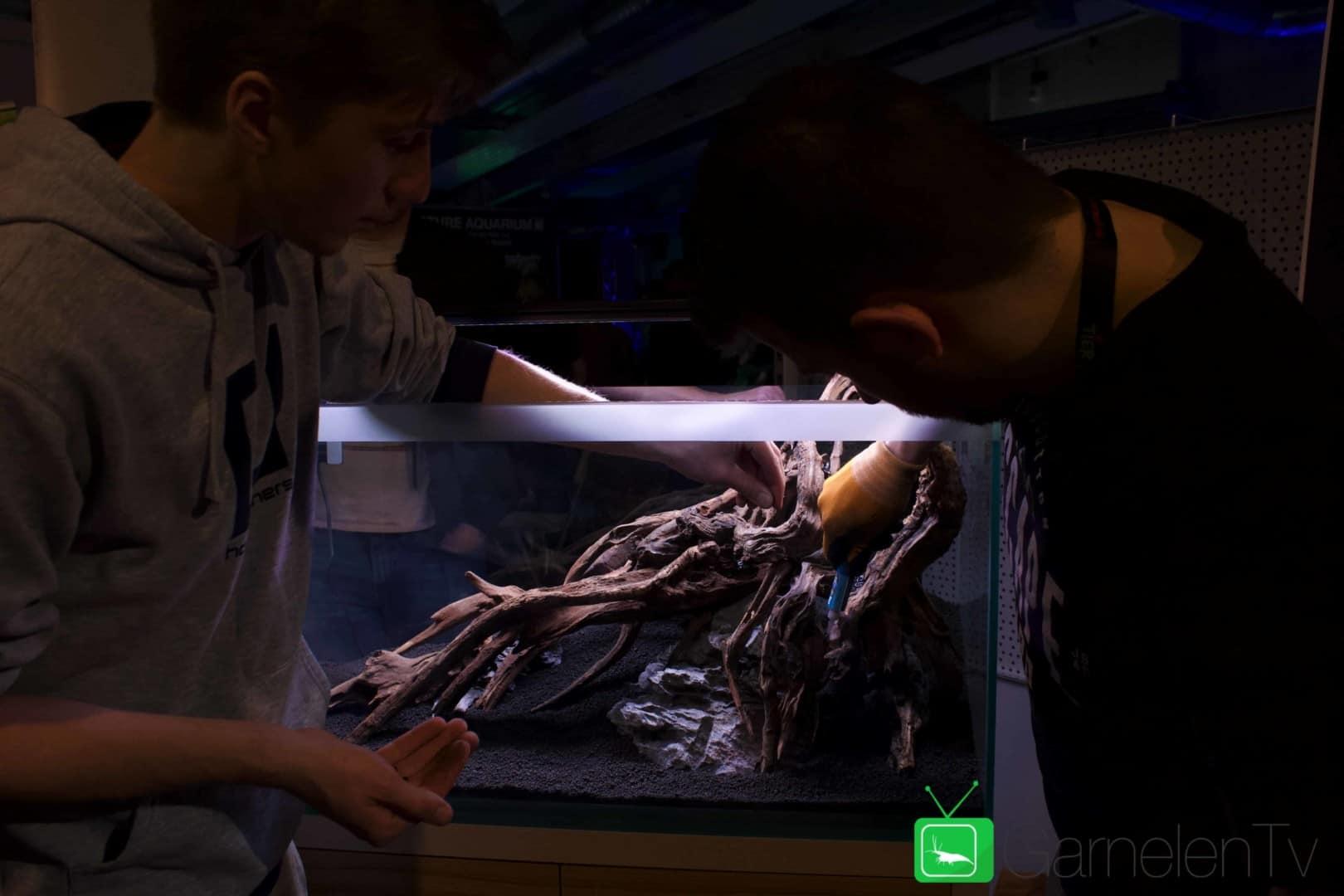 157 : Die Aquarium Design Meisterschule 57