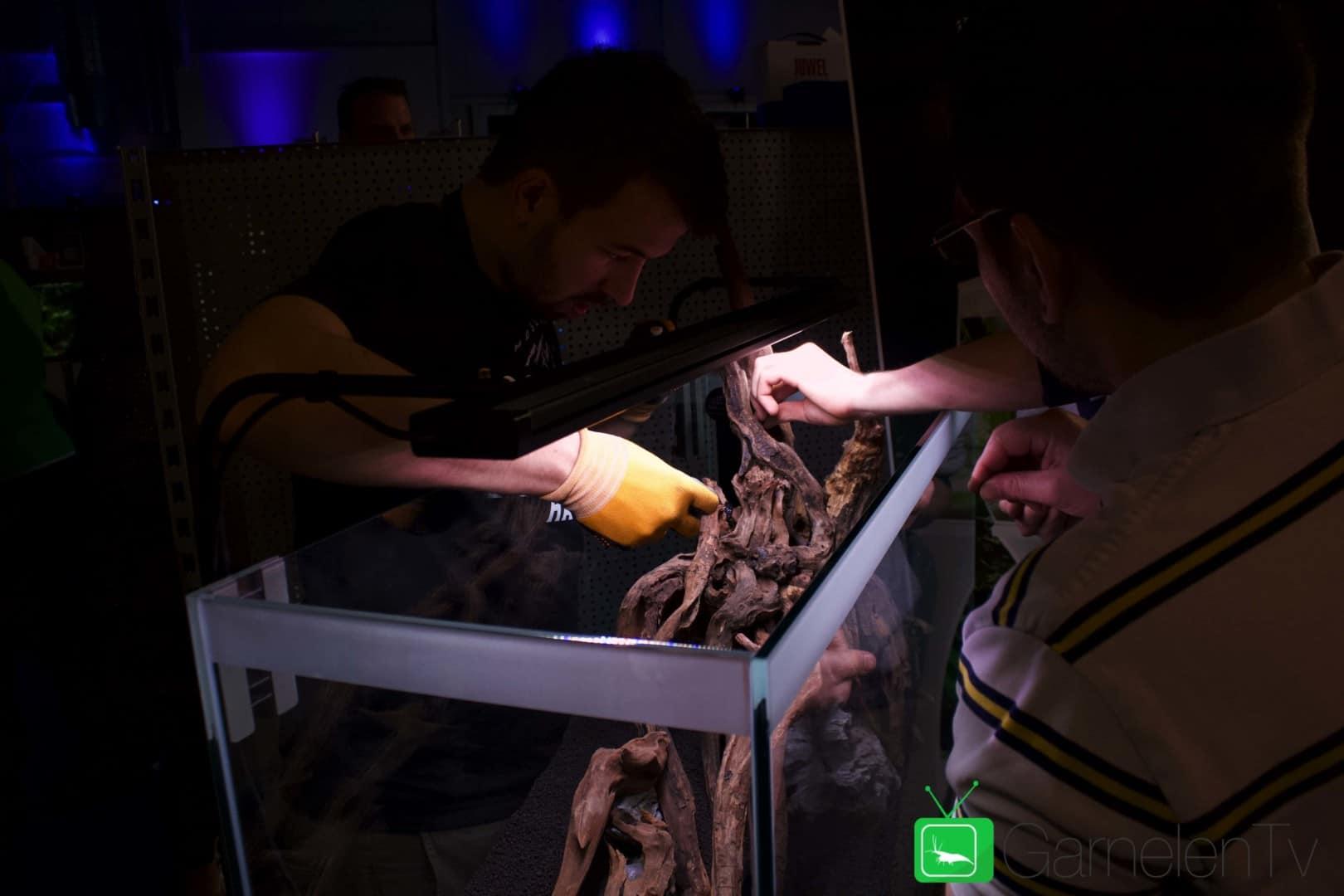 157 : Die Aquarium Design Meisterschule 67